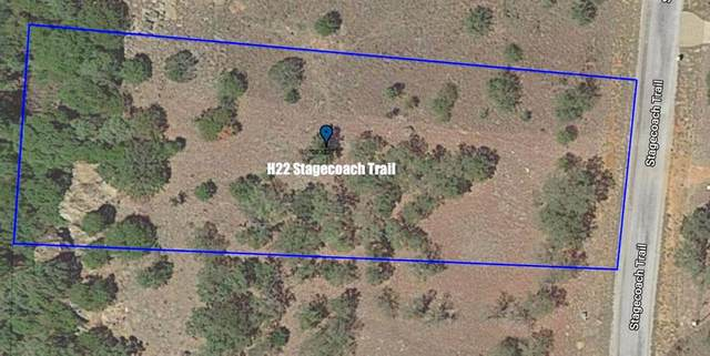 H22 Stagecoach Trail, Gordon, TX 76453 (MLS #14480645) :: The Chad Smith Team