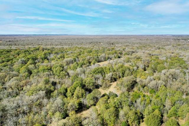 TBD Acr 2933, Palestine, TX 75803 (MLS #14480827) :: Potts Realty Group