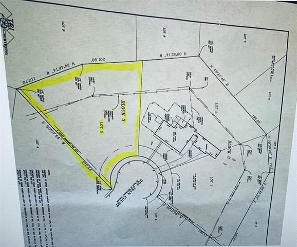 309 Jean Court, Springtown, TX 76082 (MLS #14481097) :: Bray Real Estate Group