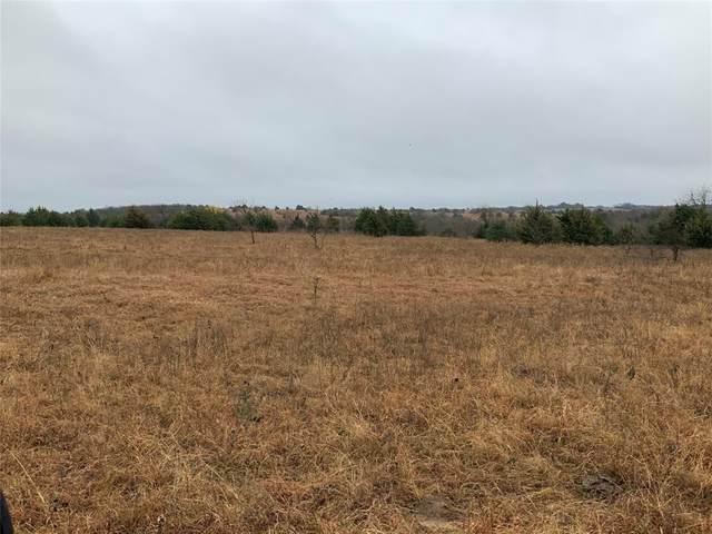 46.35 County Road 703, Farmersville, TX 75442 (MLS #14481283) :: The Mauelshagen Group