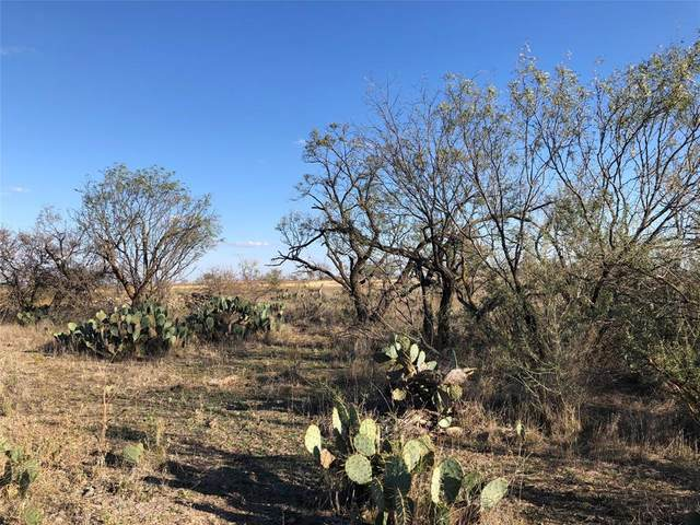 5101 County Road 161, Bangs, TX 76823 (MLS #14481645) :: The Mauelshagen Group