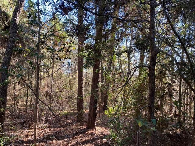 TBD Deerwood Drive Lane, Harleton, TX 75651 (MLS #14482882) :: Jones-Papadopoulos & Co