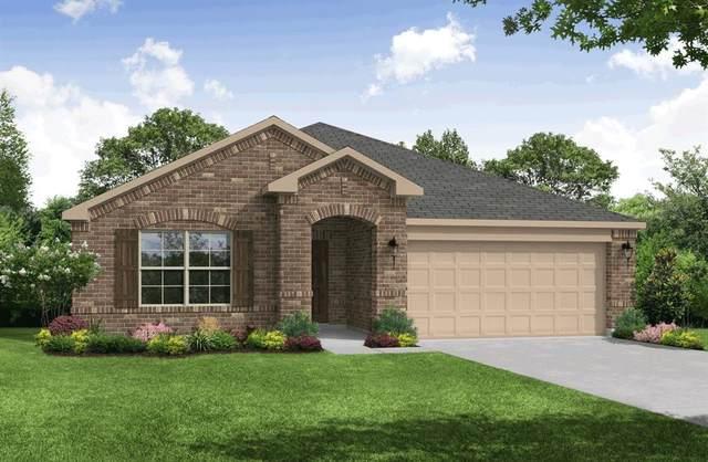 2508 Briarbrook Drive, Denton, TX 76207 (MLS #14483958) :: The Kimberly Davis Group