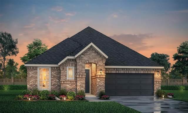 10614 Flycatcher Lane, Irving, TX 75063 (MLS #14484403) :: The Kimberly Davis Group