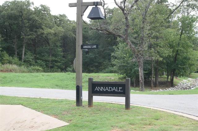 Lot 28 Annadale Lane, Gordonville, TX 76245 (MLS #14485993) :: Potts Realty Group