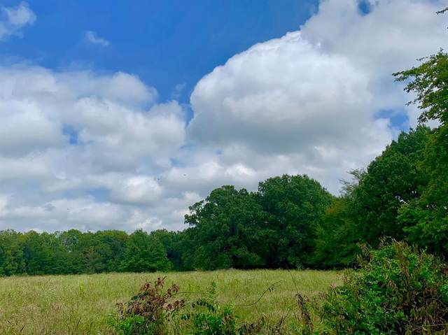Tract 4 County Rd 1350, Clarksville, TX 75426 (MLS #14486683) :: VIVO Realty