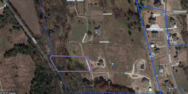 Lot 21 Meadow Hill Lane, Sherman, TX 75090 (MLS #14486747) :: Robbins Real Estate Group