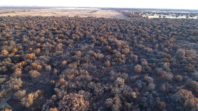 TBD County Road 335, Hawley, TX 79525 (MLS #14488450) :: Frankie Arthur Real Estate