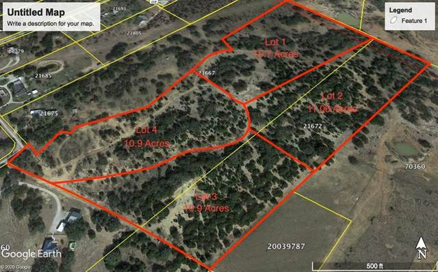 300 L-2 County Road 319, Early, TX 76802 (MLS #14491354) :: Jones-Papadopoulos & Co