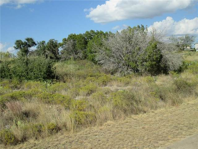 Lt 217 Oak Tree Drive, Graford, TX 76449 (MLS #14492491) :: Feller Realty