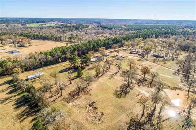 7741 Cr 130D, Overton, TX 75684 (MLS #14492550) :: The Chad Smith Team