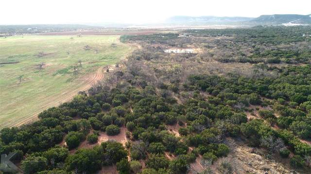 TBD County Rd 257, Abilene, TX 79606 (MLS #14492655) :: The Kimberly Davis Group