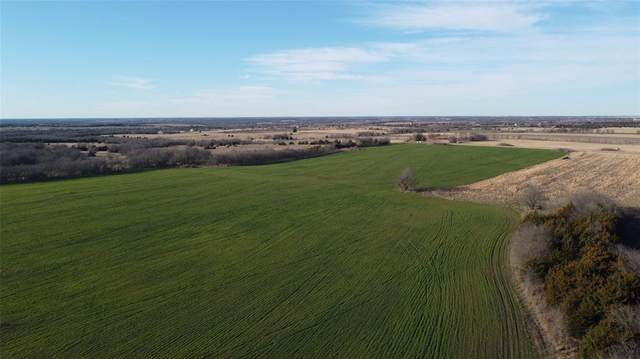 26 ac County Rd 1099, Celeste, TX 75423 (MLS #14493656) :: The Kimberly Davis Group