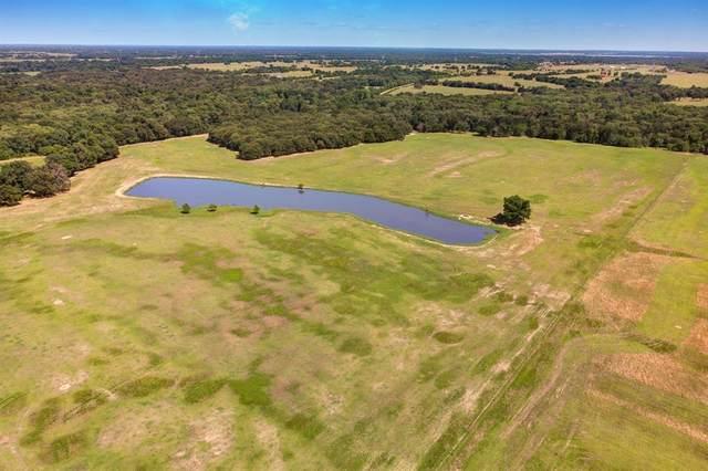 Sulphur Springs, TX 75482 :: Trinity Premier Properties
