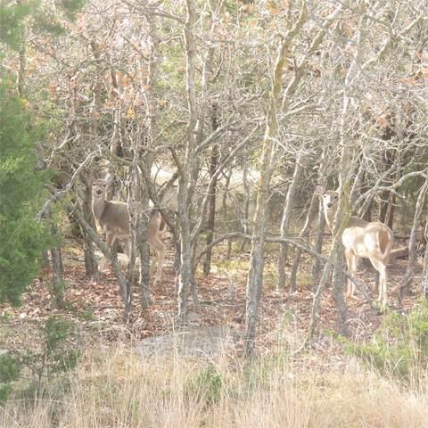 Lot 85 Preston Trail, Possum Kingdom Lake, TX 76449 (MLS #14497341) :: The Rhodes Team