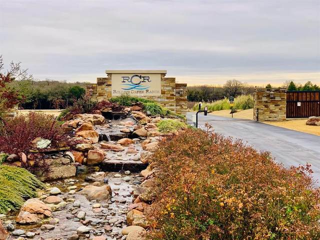 724 Coastal Meadows Court, Granbury, TX 76049 (MLS #14498786) :: Real Estate By Design