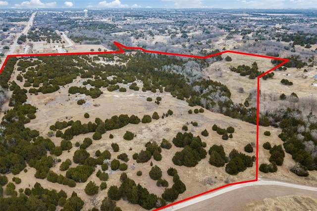 1198 S Clark Road, Cedar Hill, TX 75104 (MLS #14499194) :: Real Estate By Design