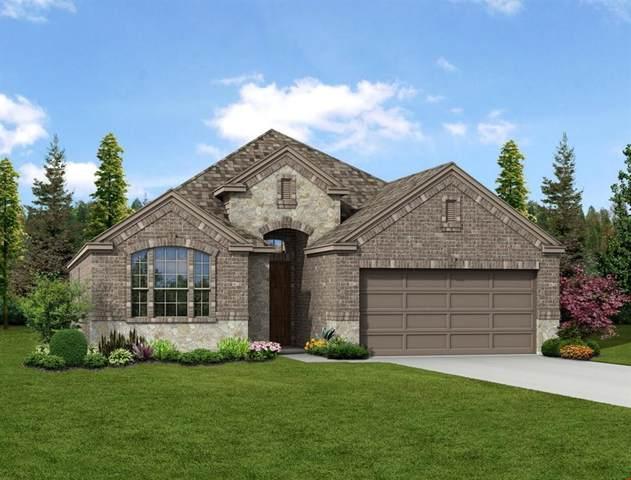 1105 Diamond Dove Drive, Little Elm, TX 75068 (MLS #14499742) :: Real Estate By Design
