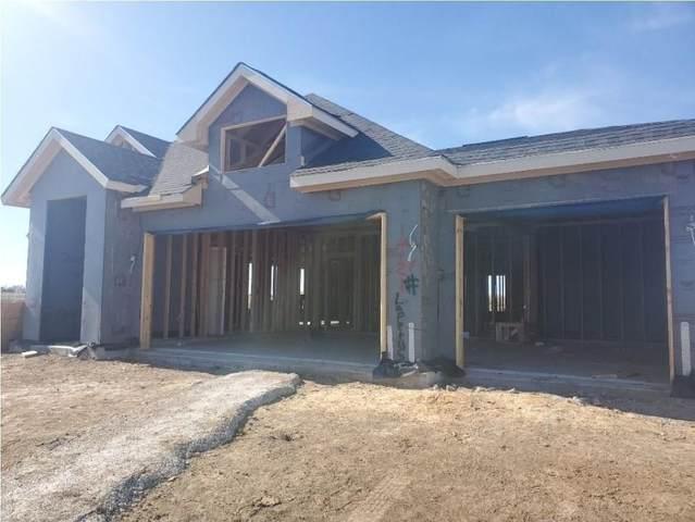 14121 Lapetus Drive, Fort Worth, TX 76179 (MLS #14499787) :: The Kimberly Davis Group