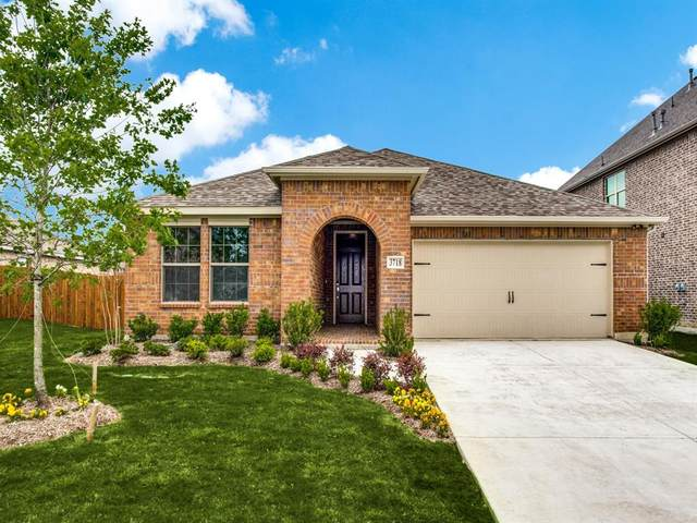 6013 Horsetail Drive, Mckinney, TX 75015 (MLS #14499932) :: Hargrove Realty Group