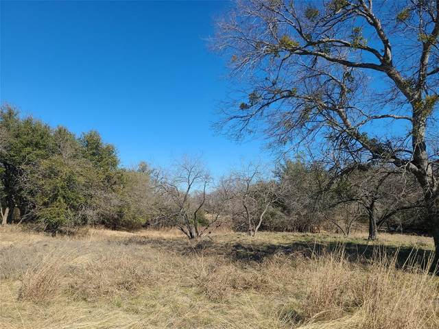 1088 White Bluff, Whitney, TX 76692 (MLS #14499959) :: The Chad Smith Team
