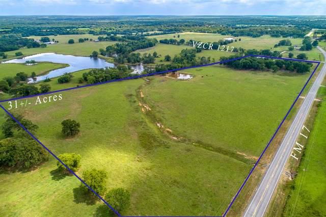 0000 Fm 17, Grand Saline, TX 75140 (MLS #14500914) :: Lyn L. Thomas Real Estate   Keller Williams Allen