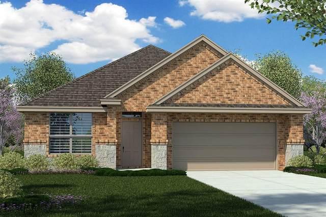 1517 Seabiscuit Drive, Granbury, TX 76049 (MLS #14501473) :: Real Estate By Design
