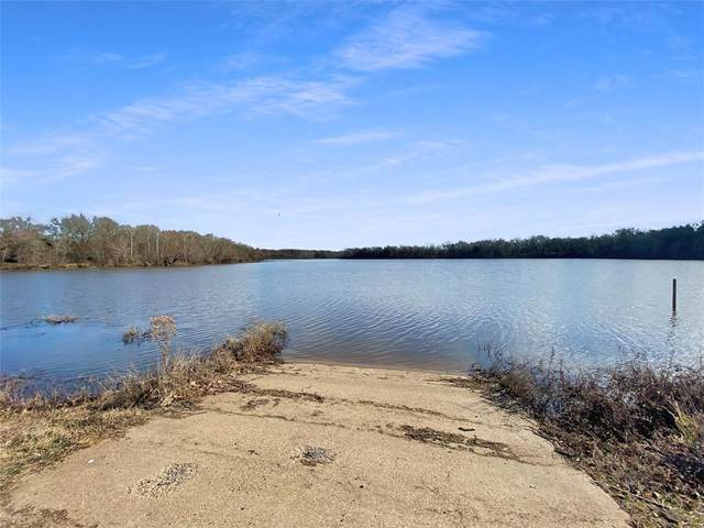1099 Eagle Lake Drive, Wills Point, TX 75169 (MLS #14501649) :: Feller Realty