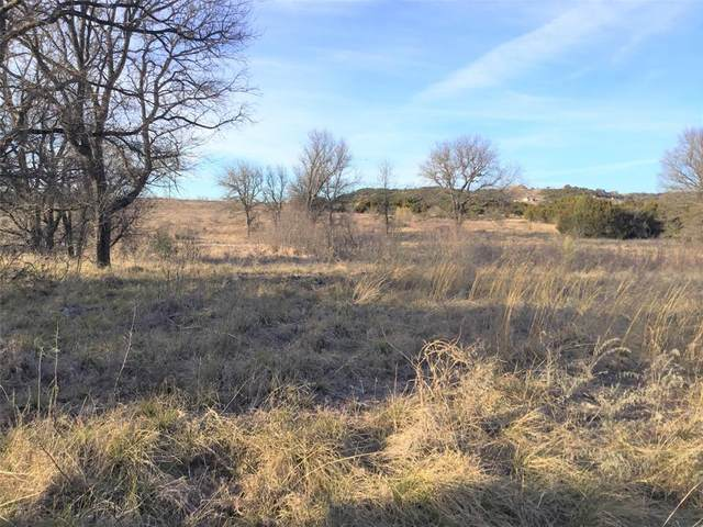 Lot 179 Morning Glory, Possum Kingdom Lake, TX 76449 (MLS #14501762) :: The Mitchell Group