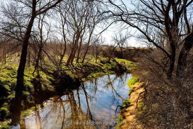 TBD County Road 433, Merkel, TX 79536 (MLS #14501965) :: The Heyl Group at Keller Williams