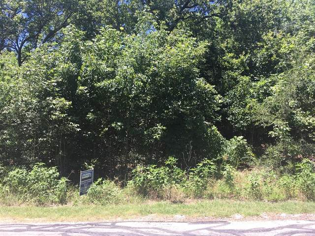 Lot 35 Meandering Way, Corsicana, TX 75109 (MLS #14502133) :: The Heyl Group at Keller Williams