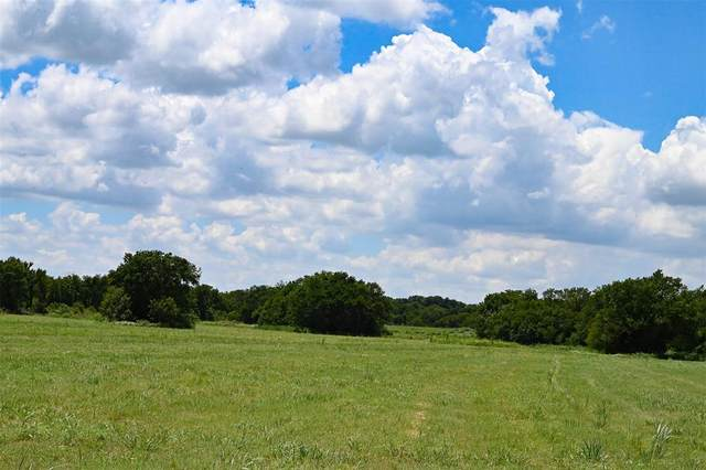 301 E Matt Road, Ferris, TX 75152 (MLS #14502833) :: The Hornburg Real Estate Group