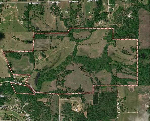 297+AC Cr 224, Gainesville, TX 76240 (MLS #14503203) :: All Cities USA Realty