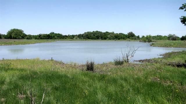 TBD County Road 410, Evant, TX 76525 (MLS #14503957) :: The Kimberly Davis Group