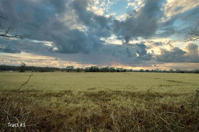 Tract 3 Highway 11, Sulphur Springs, TX 75482 (MLS #14504645) :: The Kimberly Davis Group