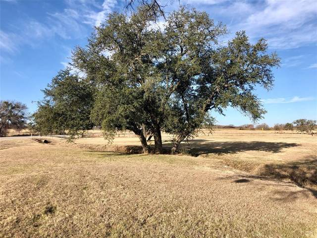 0000 Us 281 Highway N, Santo, TX 76472 (MLS #14504712) :: The Kimberly Davis Group