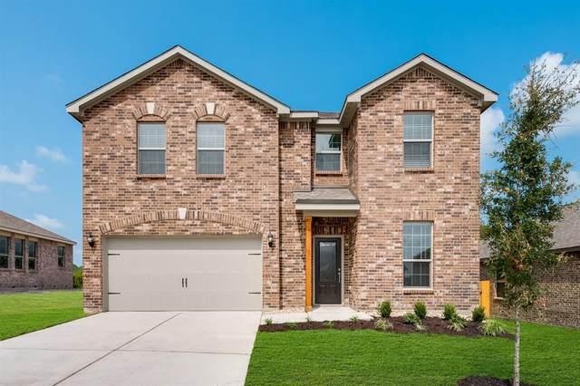 274 Moonstone Way, Princeton, TX 75407 (MLS #14504909) :: The Mauelshagen Group
