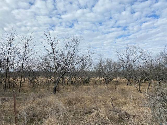 Lot 4 Fm 922, Valley View, TX 76272 (MLS #14505031) :: The Mauelshagen Group