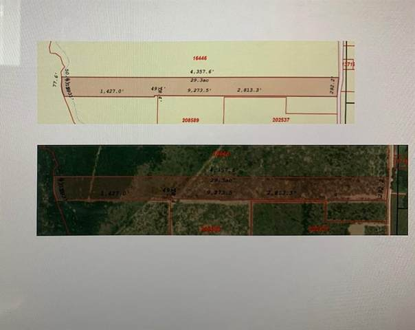 3 County Road 146, Kaufman, TX 75142 (MLS #14505406) :: The Kimberly Davis Group
