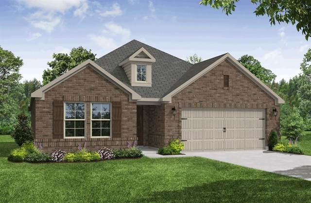 6710 Aster Drive, Midlothian, TX 76065 (MLS #14505883) :: Team Tiller