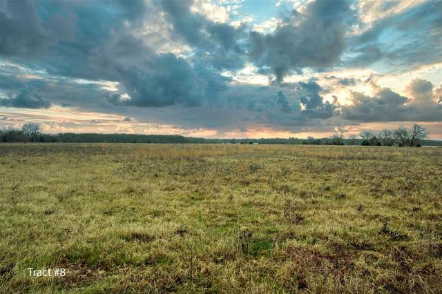 Tract 8 County Road 4716, Sulphur Springs, TX 75482 (MLS #14505941) :: The Kimberly Davis Group