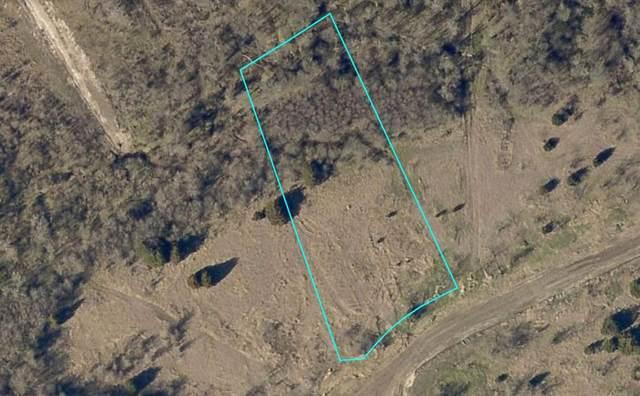 4168 Weeping Oak, Royse City, TX 75189 (MLS #14506449) :: The Mauelshagen Group