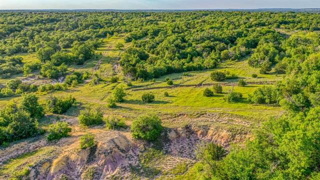 1001 Spring Ranch Drive, Weatherford, TX 76088 (MLS #14506511) :: Robbins Real Estate Group