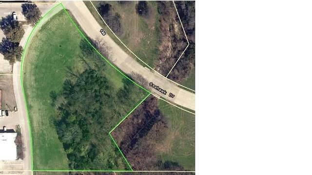 150 Seahawk Drive, Desoto, TX 75115 (MLS #14506552) :: Lyn L. Thomas Real Estate   Keller Williams Allen