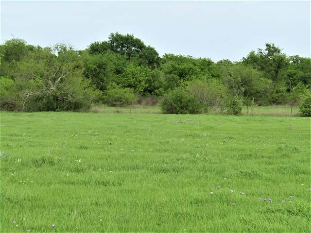 000A County Road 337, Dublin, TX 76446 (MLS #14506954) :: Real Estate By Design