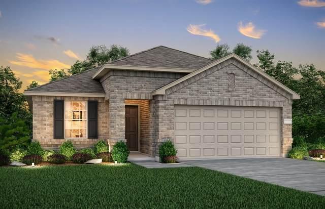 1705 Albatross Road, Princeton, TX 75407 (MLS #14507044) :: The Hornburg Real Estate Group