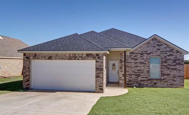 700 Holiday Hills Drive, Mineral Wells, TX 76067 (MLS #14507083) :: Robbins Real Estate Group