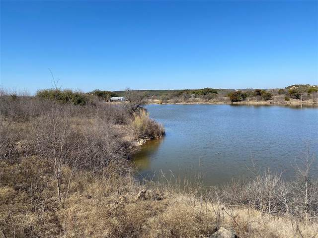 877 N Clear Cove Court, Possum Kingdom Lake, TX 76449 (MLS #14507222) :: Potts Realty Group