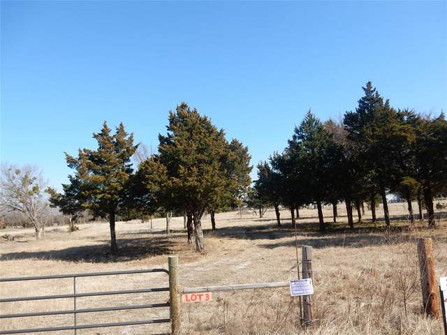 Lot 3 S Fm 372, Valley View, TX 76272 (MLS #14507693) :: The Kimberly Davis Group