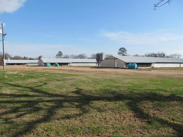 tbd County Road 4245, Mount Vernon, TX 75457 (MLS #14509394) :: Real Estate By Design